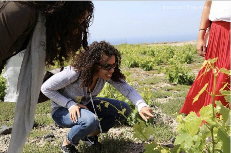 Private Tour: Santorini Wine Adventure